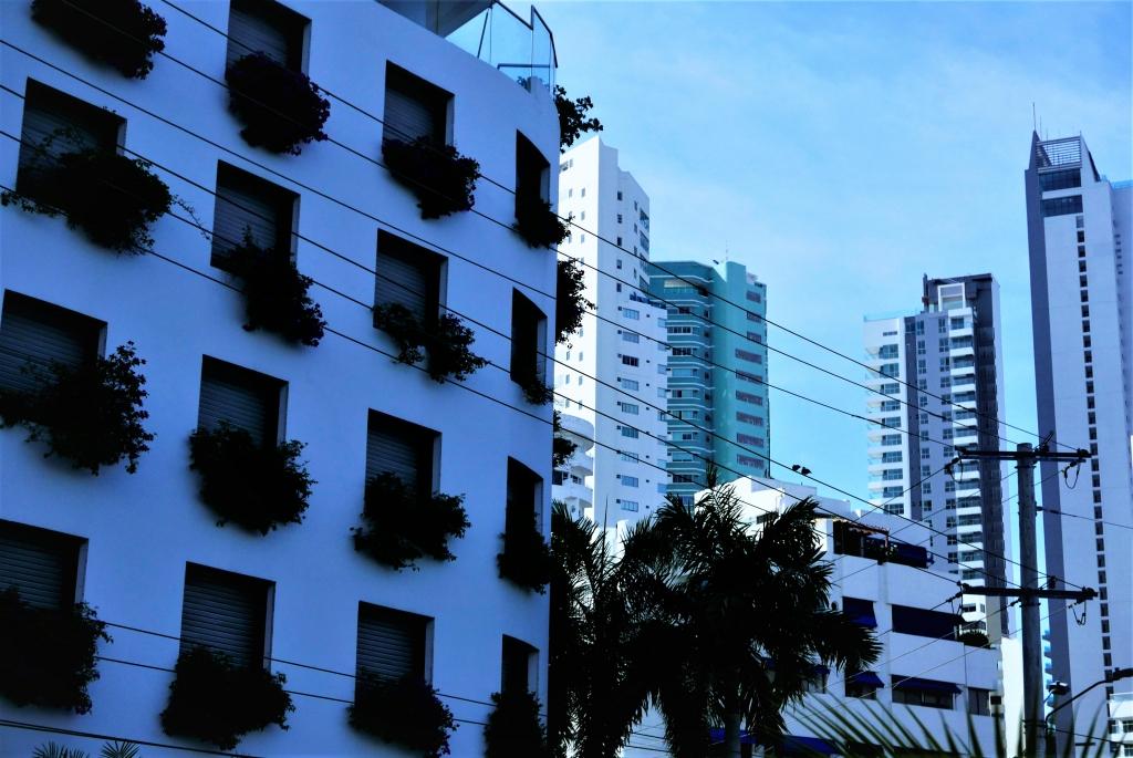 Edificios en Bocagrande