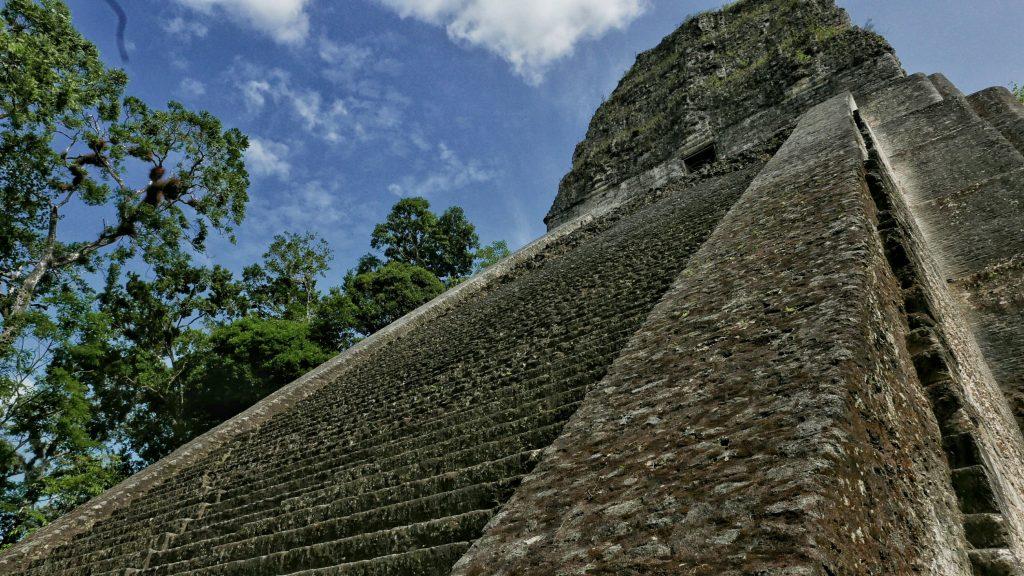 El Templo V se esconde entre la selva solitario