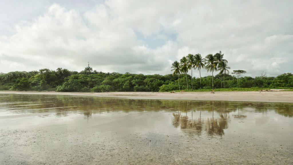 Playa Guiones es una playa enorme, a lo largo y ancho, pero lo que de verdad le da la magia es que tiene la selva justo detrás