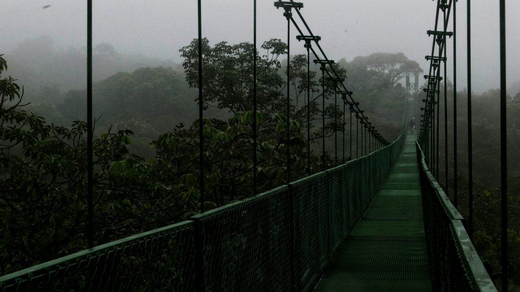 Puente colgante sobre el Bosque Nuboso de Monteverde en Costa Rica