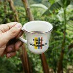 Buscando la Finca cafetera perfecta: Don Elías